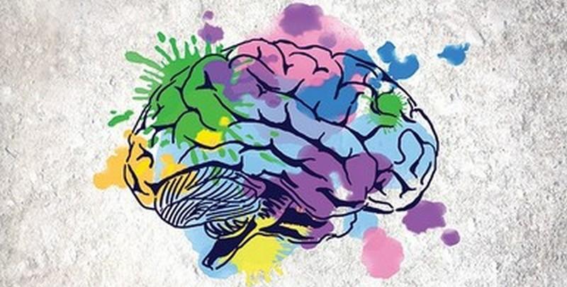 כח למוח