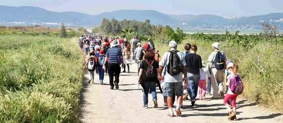 """צעדת שביל יזרעאל-קק""""ל תתקיים השנה ביער כפר החורש, יום שישי 11.5  כולם מוזמנים!"""