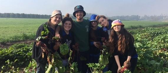 נוער עמק יזרעאל ציין את שבוע החקלאות במגוון פעילויות חוץ משמחות