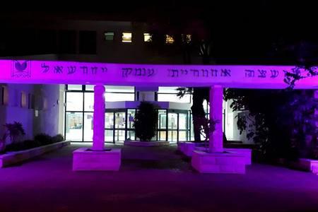 בית המועצה הואר בסגול לציון יום המודעות הבינלאומי לשוויון זכויות לאנשים עם מגבלות